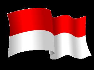 bendera merah putih berkibar 5